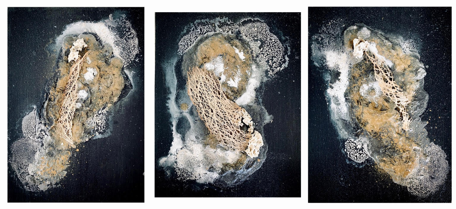 Obra Black Corallium Completa