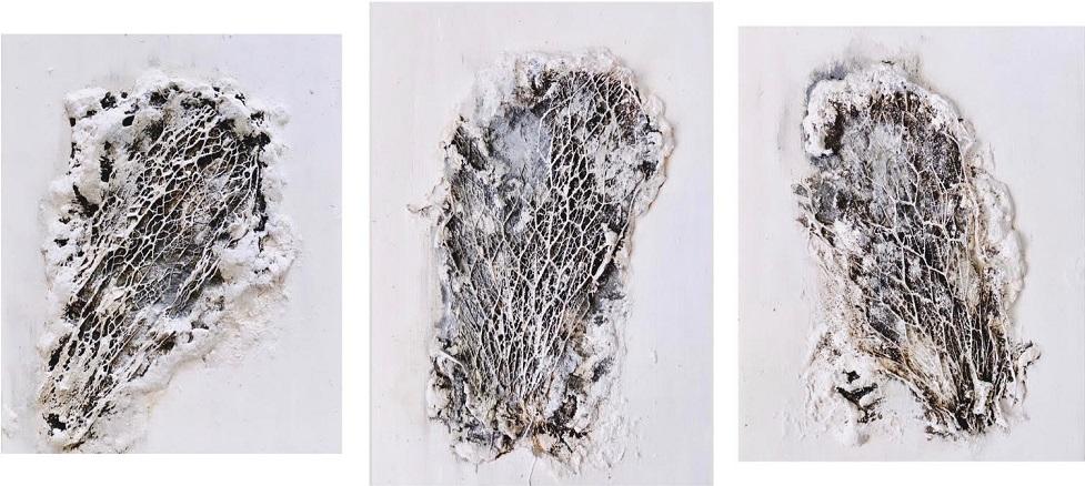 Obra White Corallium de Maral Ríos completa